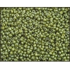 Seedbead 10/0 Luster Opaque Light Green